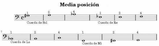 escala contrabajo, contrabajo acustico, escalas y acordes contrabajo