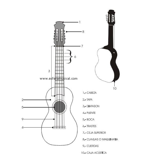 Partes Jarona Jarocha, jarona jarocha instrumento, jarona jarocha imagen, jarona jarocha dibujo