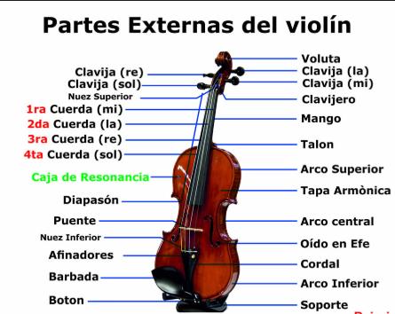 Partes del violin, tipos de violin, el violin instrumento de cuerda