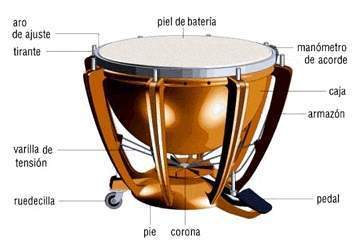 partes del timbal