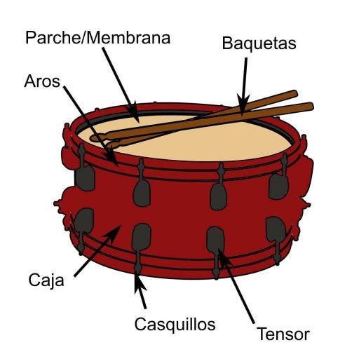 partes del tambor